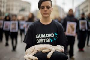 Acto por el Día de los derechos animales en Madrid (Igualdad Animal)