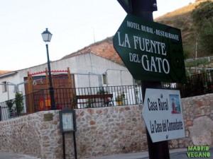 Ruta vegana por los alrededores de la ciudad de Madrid