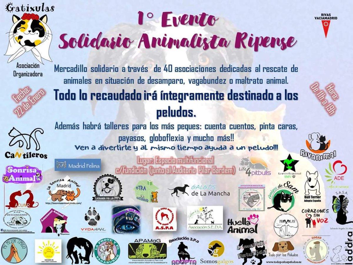 Primer Evento Solidario Animalista Ripense Madrid Vegano ~ Mercadillo De Segunda Mano Madrid