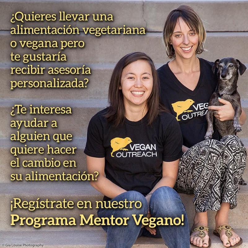 "Programa ""Mentor vegano"" en Madrid"