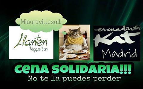 cena_solidaria_escuadron_kat_llanten