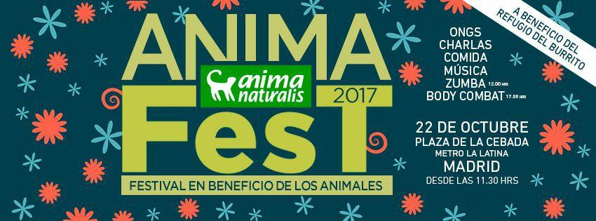 AnimaFest benéfico 2017