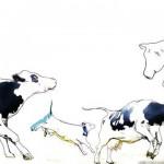La Ética Animal. ¿Una cuestión feminista?