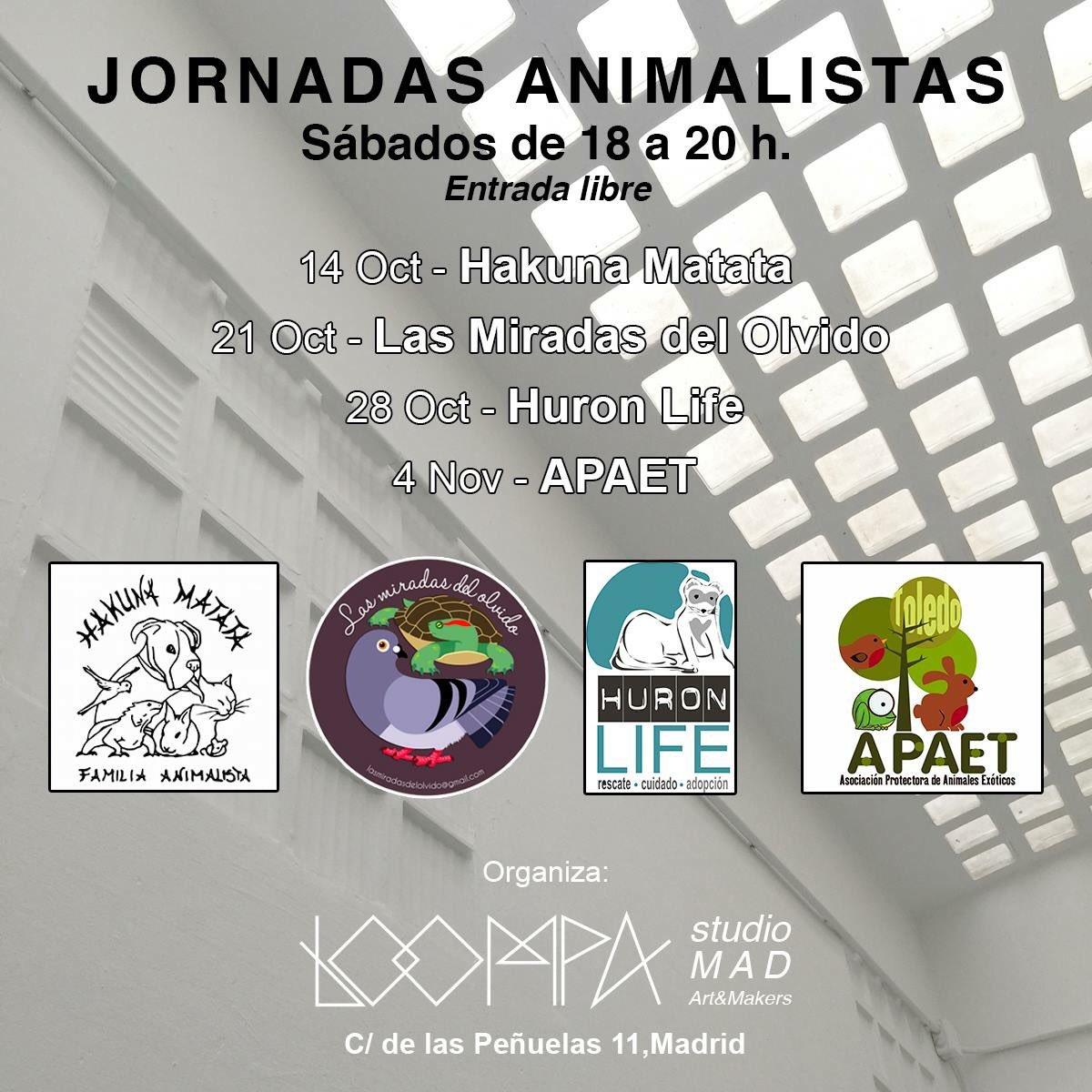 Exposición y jornadas animalistas en Loompa Studio