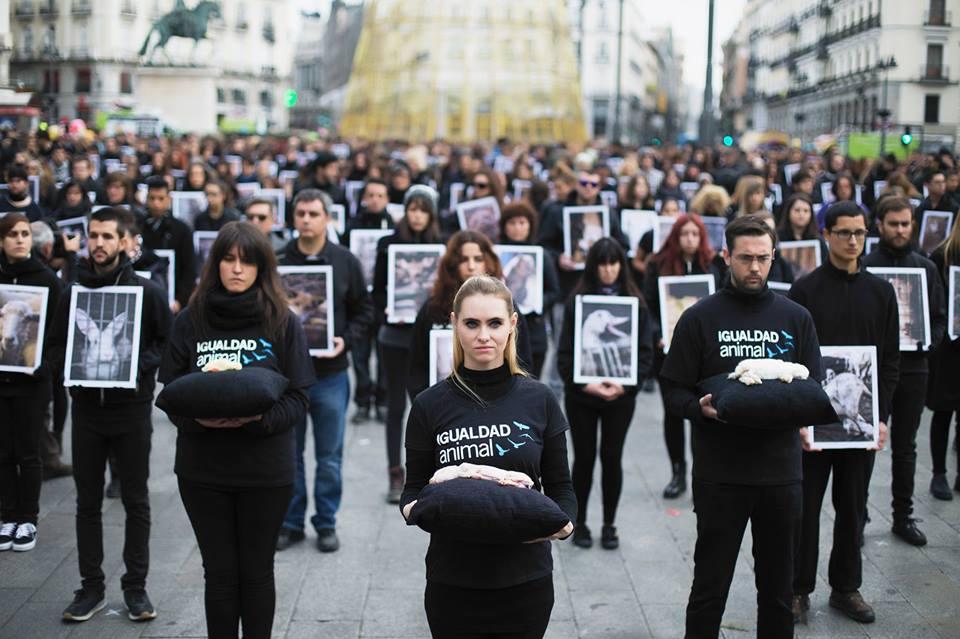 Acto por el Día de los Derechos Animales organizado por Igualdad Animal
