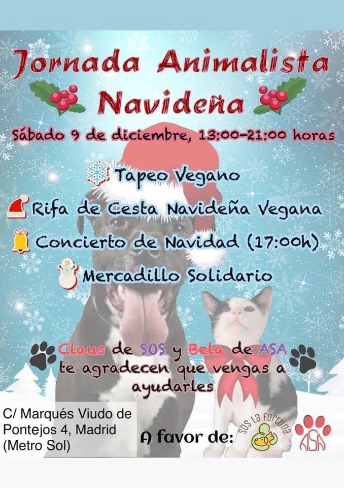 Jornada Animalista Navideña a favor de SOS La Fortuna y ASA