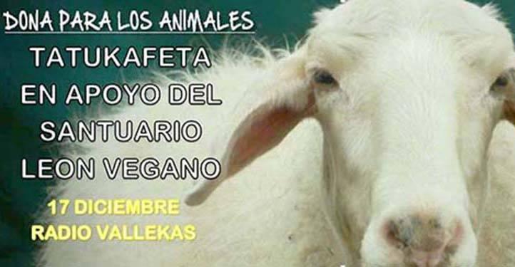 Tatukafeta en apoyo del santuario León Vegano