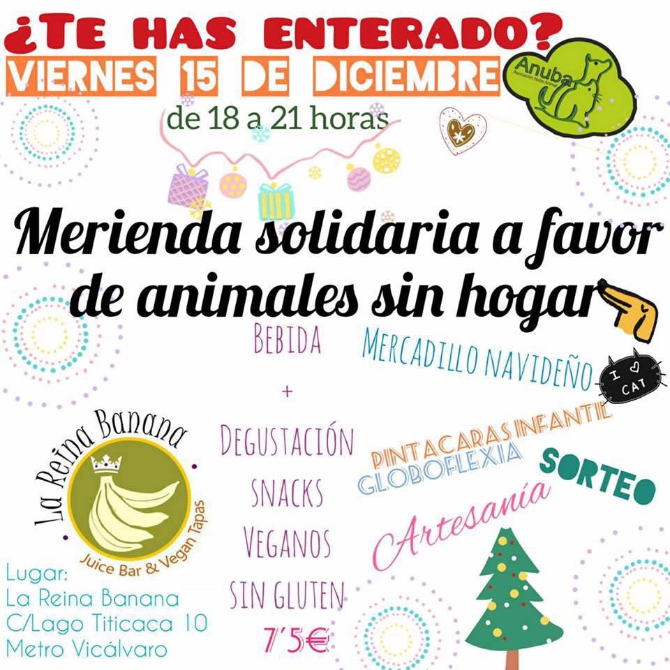 Merienda solidaria a favor de animales sin hogar