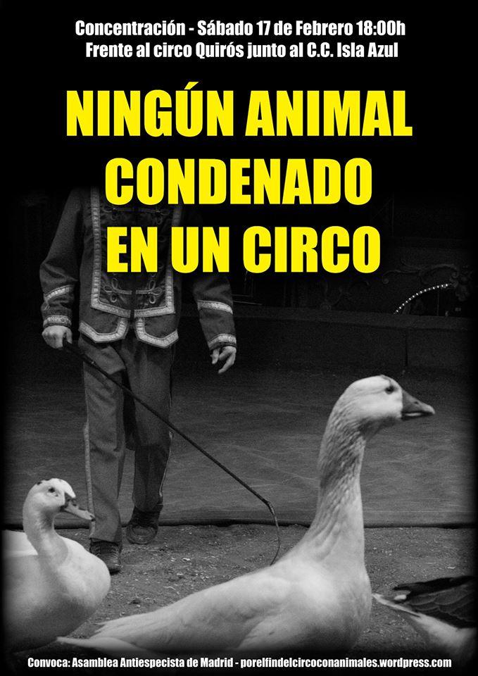 Concentración frente al Circo Quirós (17 de febrero)