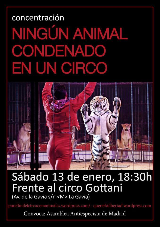 concentracion-circo-gottani-13-enero