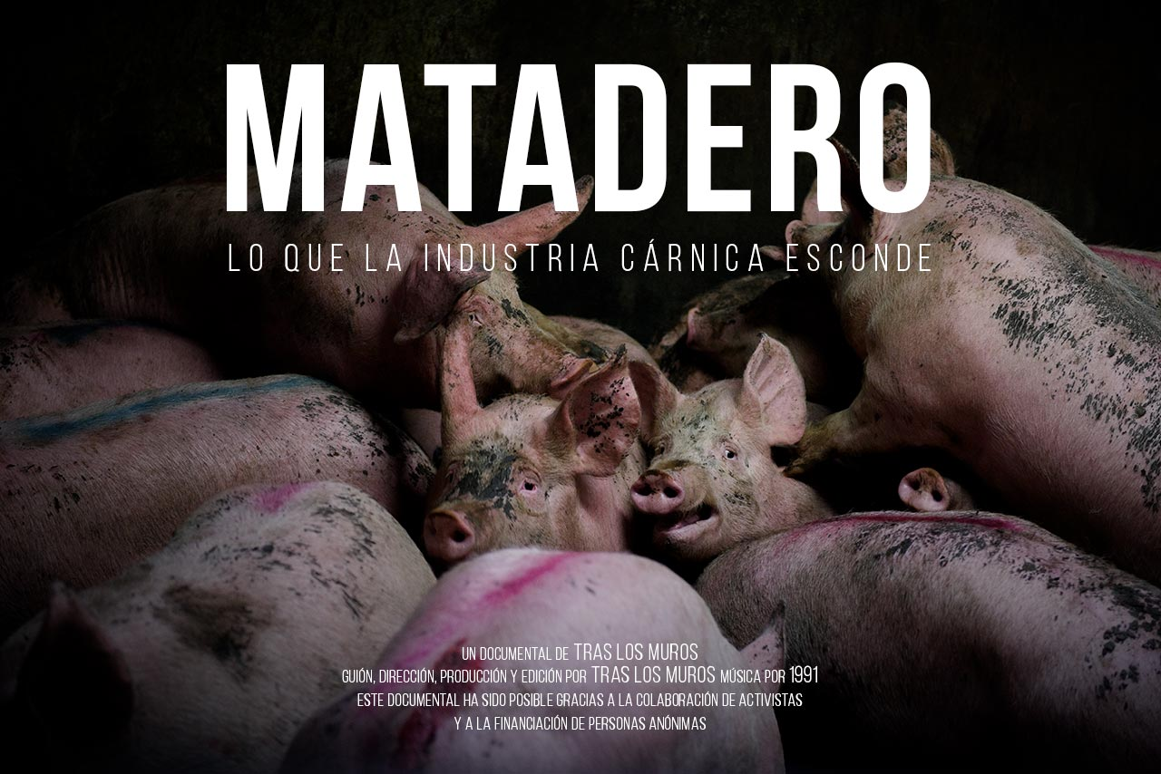 Cartel documental MATADERO