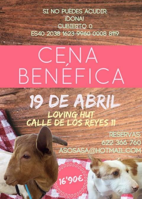 Cena a favor de Salvando Animales sin Alas en Loving Hut Madrid