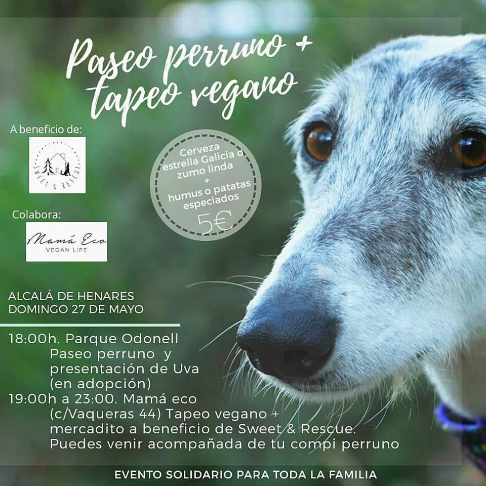 Paseo perruno + tapeo vegano a favor de Sweet & Rescue en Alcalá de Henares