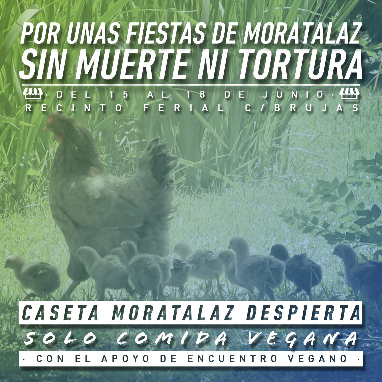 caseta_moratalaz_despierta