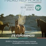 Cena III Aniversario Madrid Help Horses