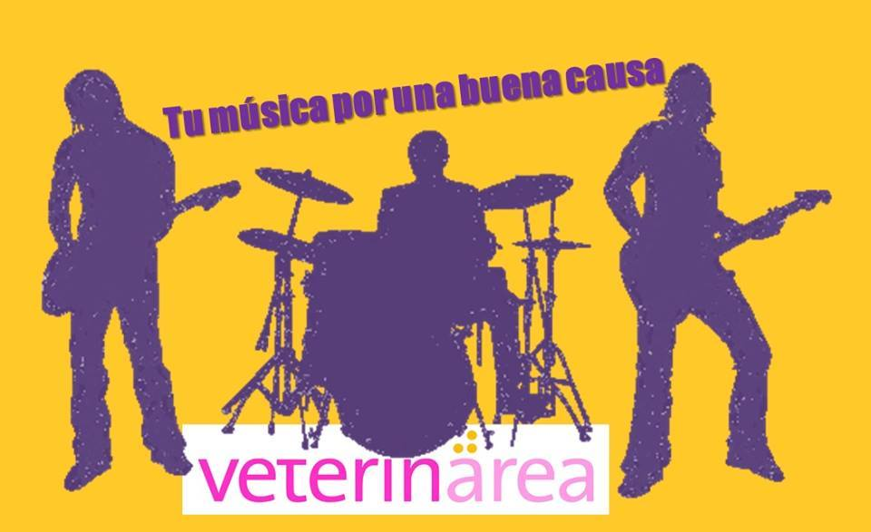musica_solidaria_homeless_cats