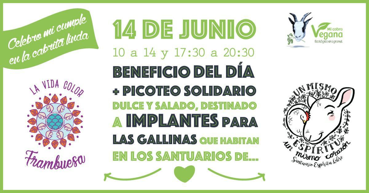 picoteo_solidario_gallinas_santuarios