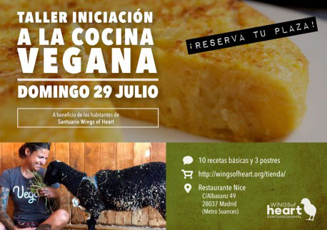 Taller de iniciaci n a la cocina vegana julio for Que es la cocina vegana