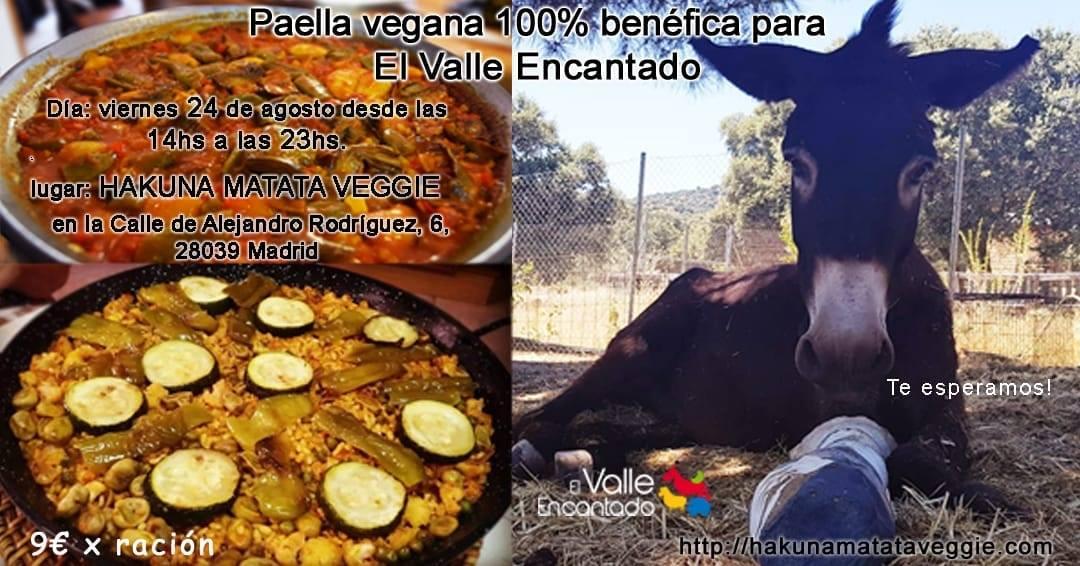 Paellada vegana a favor de El Valle Encantado en Hakuna Matata Veggie