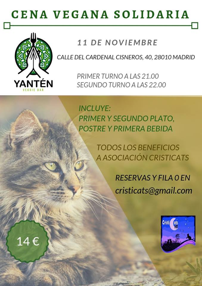 Cena a favor de gatos ferales en Yantén Veggie Bar