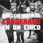 Manifestación contra el circo con animales