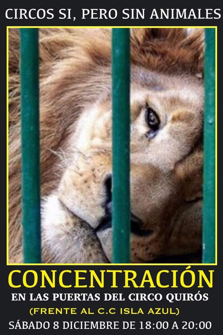 concentracion-puertas-circo-quiros