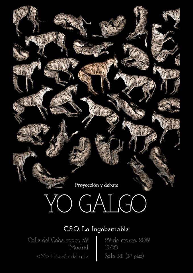 Proyección de Yo Galgo y debate