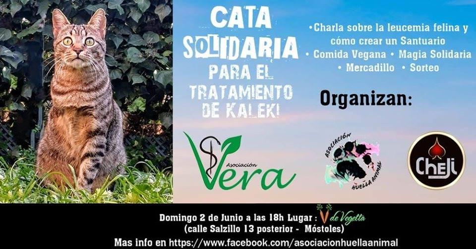 Cata Solidaria a favor de la Asociación Vera
