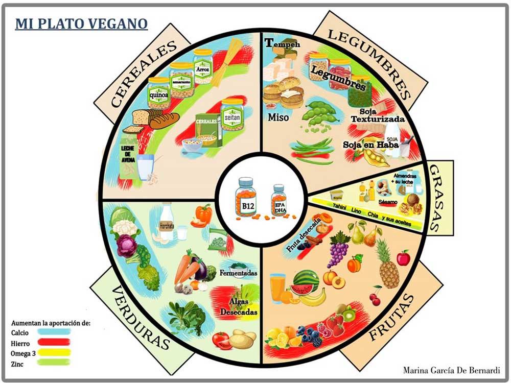dieta ovo lacto vegetariana adelgazar y re
