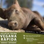 Taller de cocina vegana rápida a favor del santuario Vegan (septiembre)