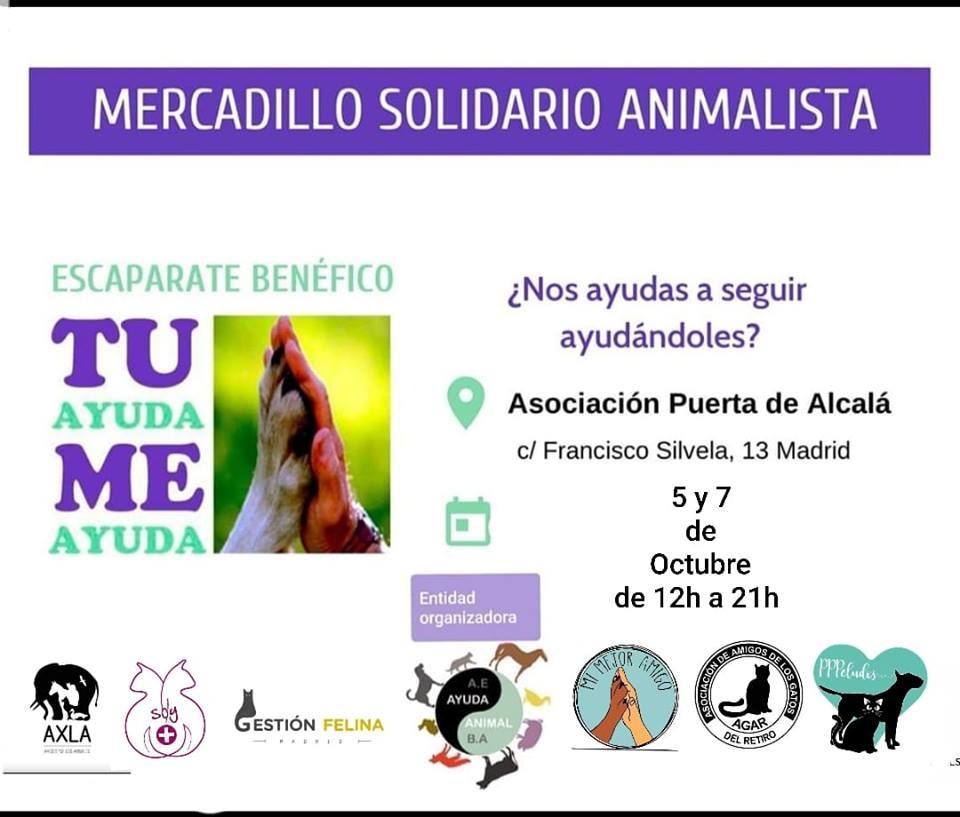 Mercadillo Escaparate Benéfico Animalista (5 y 6 de octubre)