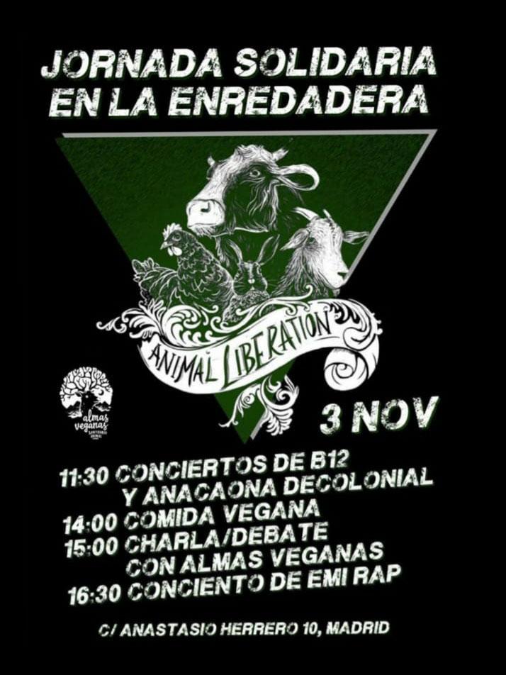 Jornada solidaria en La Enredadera