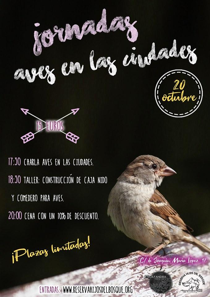 Jornadas Aves en las ciudades en Escafandra Vegana
