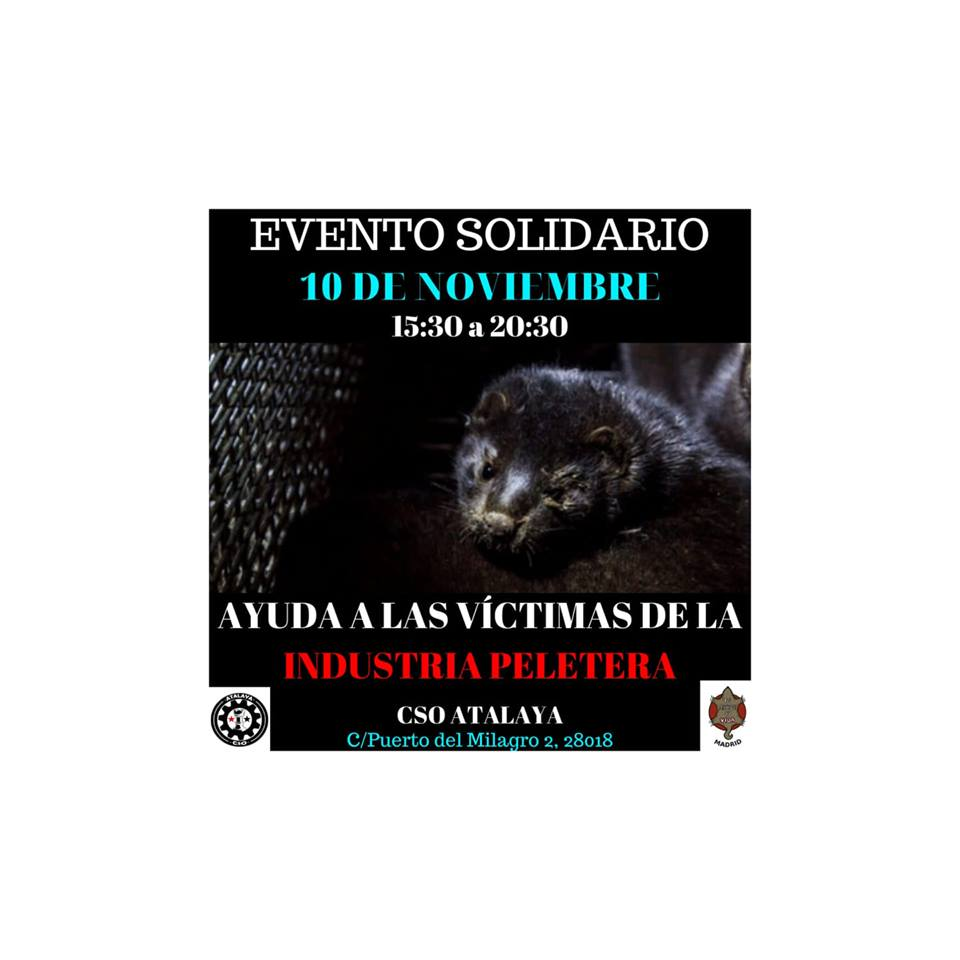 Tarde solidaria por las víctimas de la industria peletera