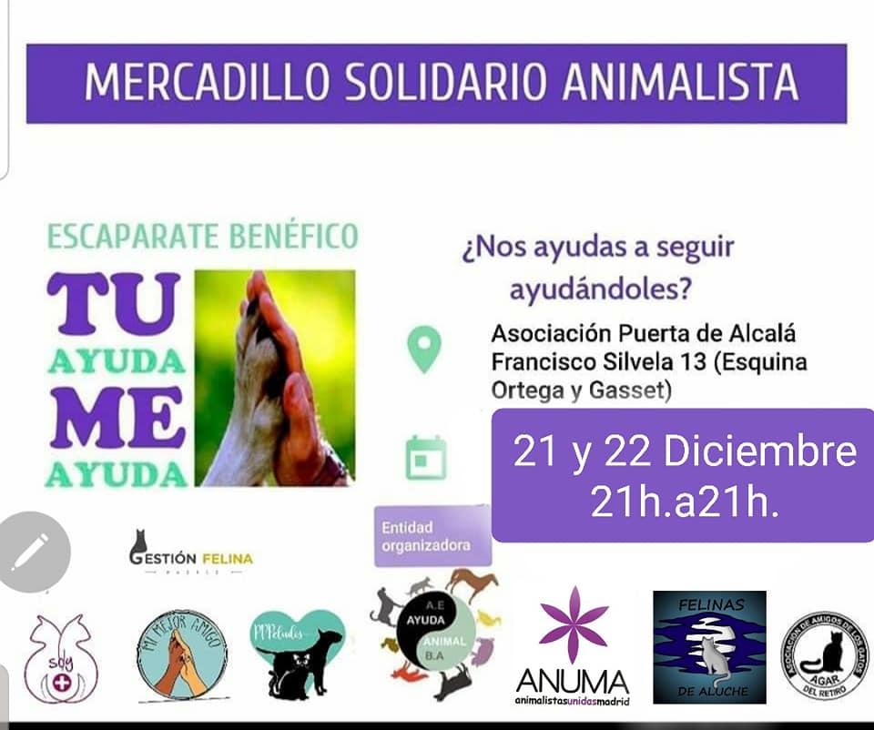 Mercadillo Escaparate Benéfico Animalista (21 y 22 de diciembre)