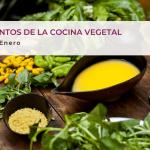 Fundamentos de la cocina vegetal
