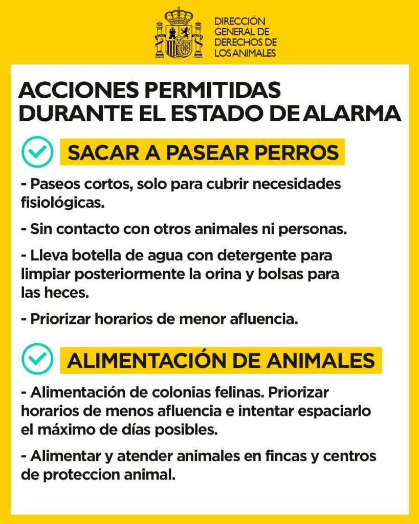 Información útil: coronavirus, seres humanos y el resto de animales