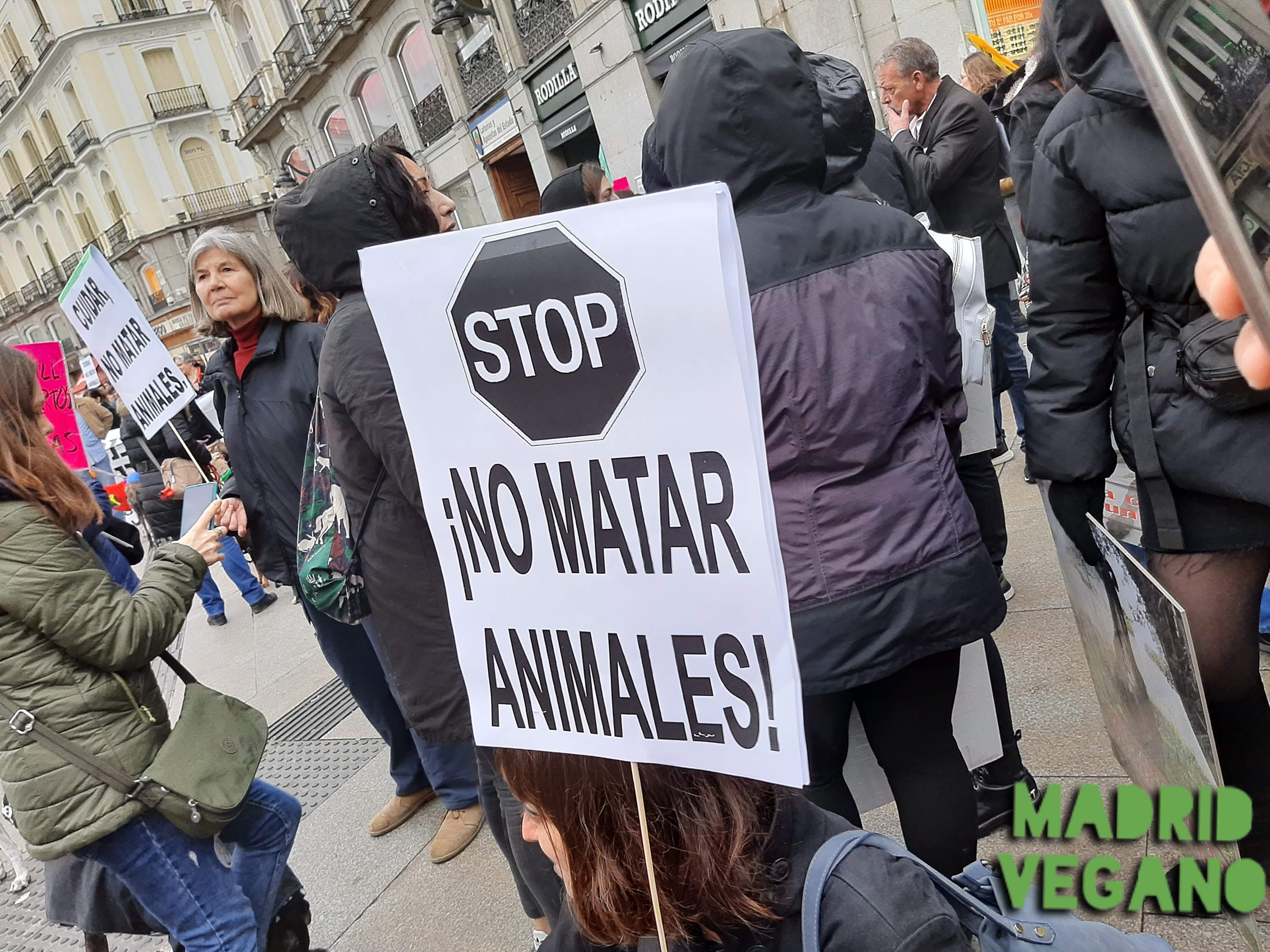 """María Hernández, psicóloga y vegana: """"Nos cuesta bastante pedir ayuda"""""""