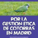 """Concentración """"Por la gestión ética de las cotorras en Madrid"""""""