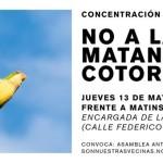No a la matanza de cotorras frente a la sede de Matinsa