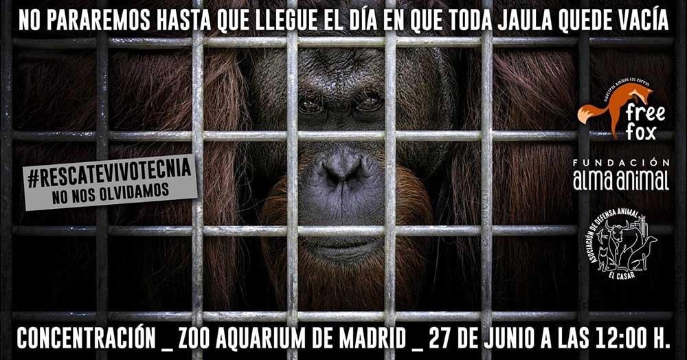 Concentracion zoo aquarium madrid