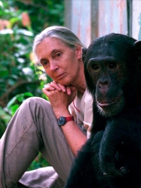 Jane Goodall apuesta por la dieta vegana