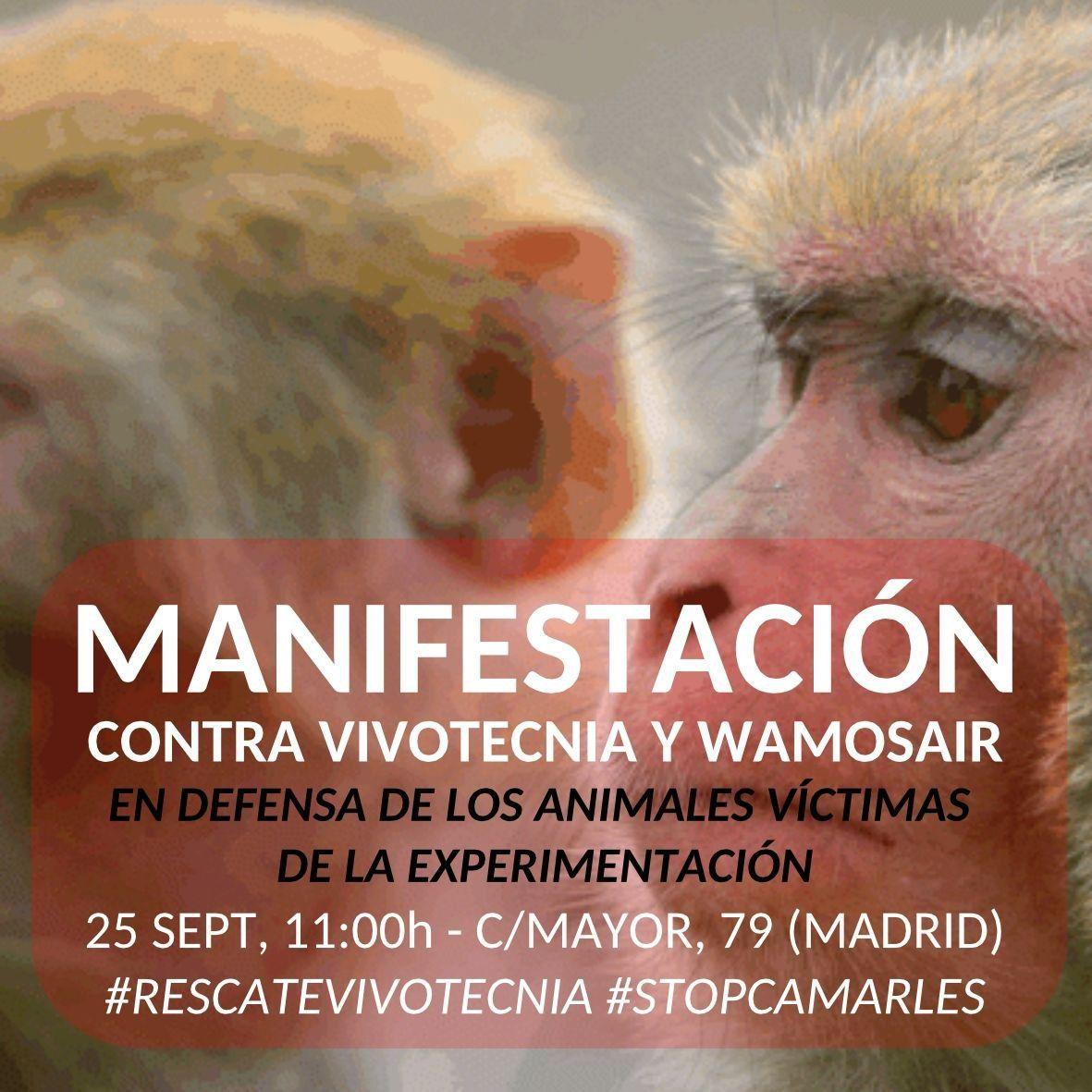 Manifestación contra Vivotecnia