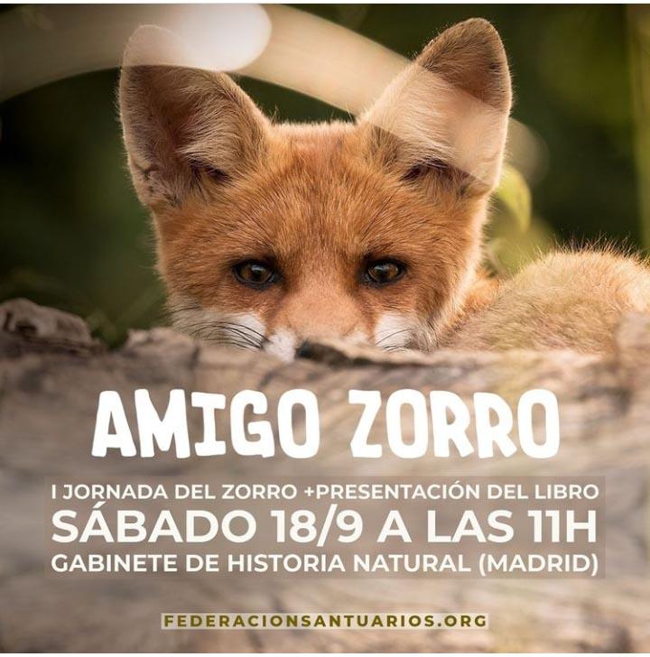 I Jornada del Zorro