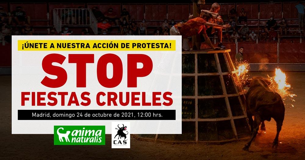Stop fiestas crueles